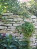 Klassische Kalk- und Sandsteine
