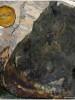 Versteinertes Holz – viele Millionen Jahre alt