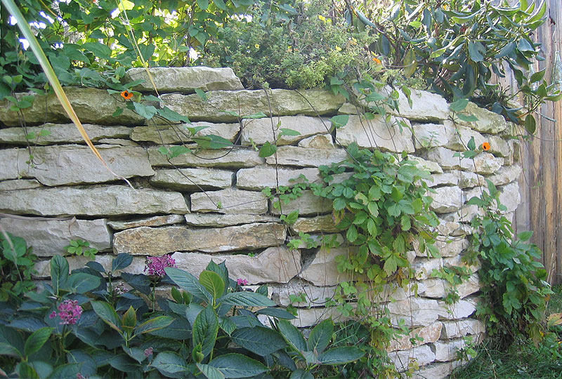 Jurakalk Mauerplatten mit Pflanzen